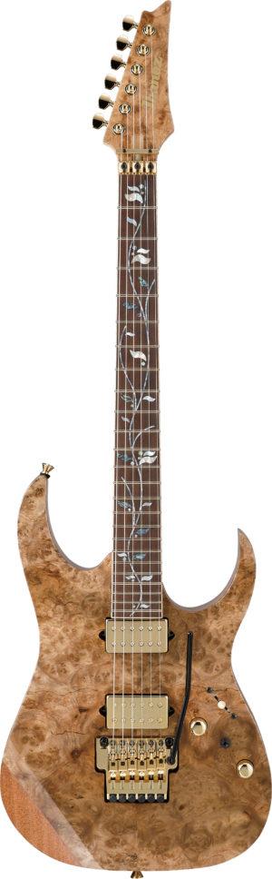 IBANEZ RG j. custom E-Gitarre 6 String + Case