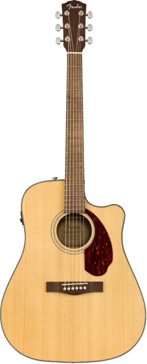 Fender Westerngitarre B-Ware