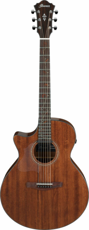 IBANEZ AE Series Akustikgitarre 6 String Lefty Natural Low Gloss