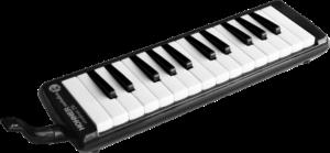 Saiteninstrumente online kaufen | Online-Shop für Musikinstrumente