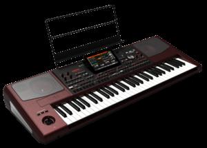 KORG Entertainer Keyboard, Pa1000, 61 Tasten, 2x33 Watt