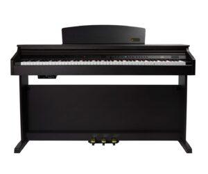 Digital Piano Artesia DP-10e